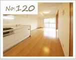 new_120