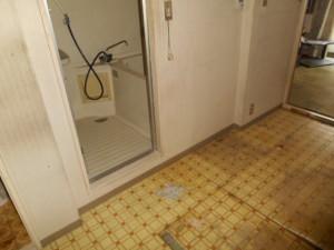 214-バスルーム施工前