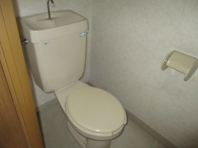 239ライフピア南越谷-施工前トイレ