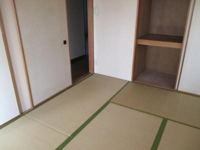 239-施工前和室畳